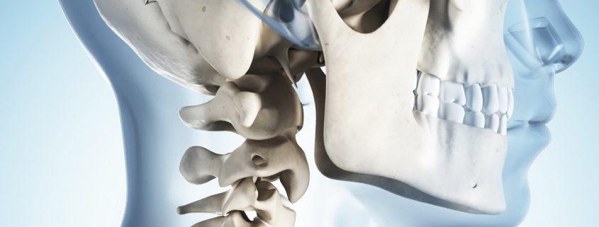 Funktionsanalye des Kiefergelenks, Zahnarztpraxis Kottulinsky-Gründer, Burhafe